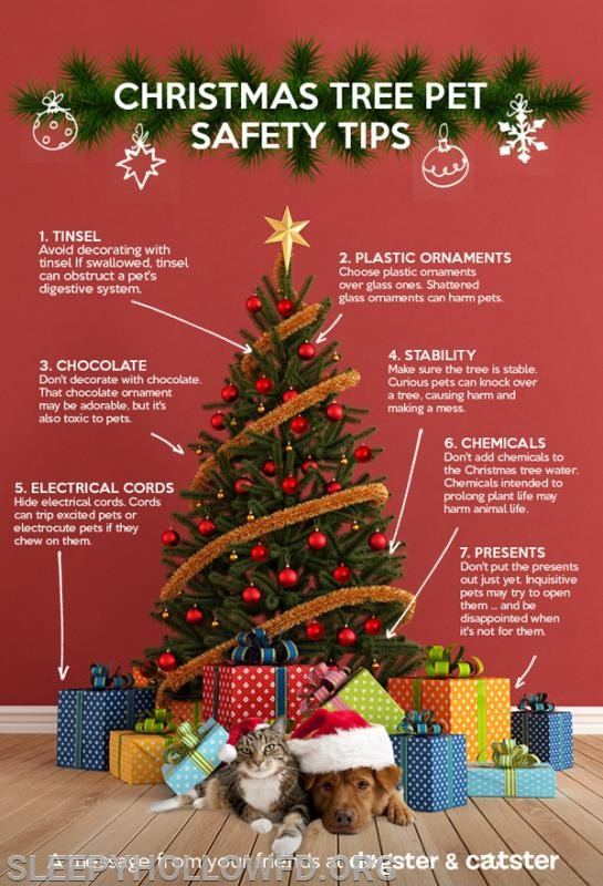 Christmas Tree Safety Tips for your pets